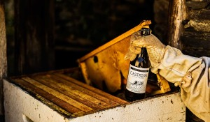 Cerveza Artesana con Miel